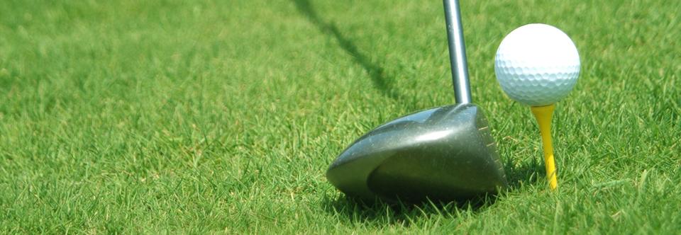 Echo Mesa Men's Golf Club